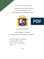 PROYECTO DE ESTUDIO DE IMPACTO AMBIETAL