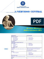Sistema Nervioso Central4