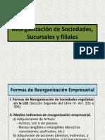 reorganizacindesociedadessucursalesyfiliales-130220172732-phpapp02