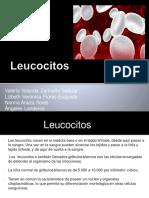 Equipo 2 Leucocitos 19-3