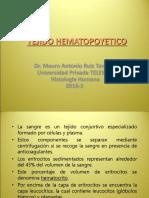 Tejido Hematopoyetico 2019-1 Telesup