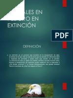 Animales en Peligro en Extinción