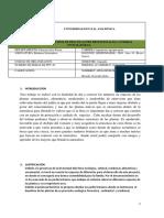 FORMATO FINAL DEL INFORME-PRÁCTICA INTEGRADORA-11.06.2019 RRRRRRRRRRRRR.docx