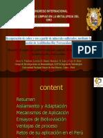 Biolixiviacion - Congreso