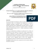 I CONGRESO INTERNACIONAL - Arequipa 2017.pdf