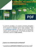 desarrollo de las industria.pdf