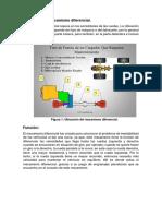 Diferencial Estandar (1)