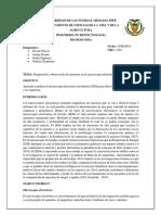 Informe1_Microscopia