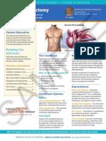 app (1).pdf