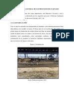 DESCRIPCIÓN GENERAL DE LOS PROCESOS DEL FAENADO.docx