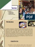 QALIWARMA-FINAL2.pptx