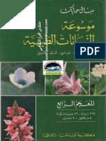 موسوعة النباتات الطبية 4