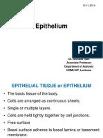 A Epithelial Tissue1!16!12 14