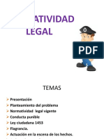 4- Normatividad Legal