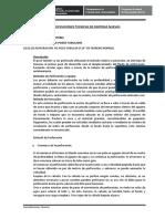 Especificaciones Técnicas Jahuerja San Pedro.docx