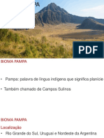 Aula Bioma Pampa