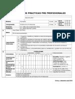 396170822 Plan de Practicas Pre Profesionales Docx