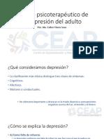 Manejo Psicoterapéutico de La Depresión Del Adulto