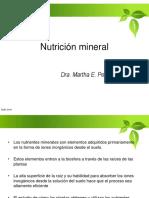 4. Nutricion Mineral
