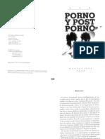 05026958 ECHAVARREN - Porno y Post Porno