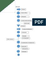 DAP Procesos