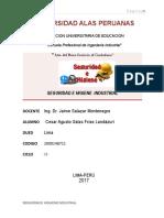TRABAJO ACADÉMICO DE SEGURIDAD E HIGIENE  INDUSTRIAL -salas Frías Landazuri Cesar 1.2