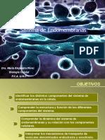Teórico-3-Sistema-endomembranas-1