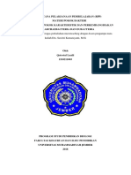 RPP Mikroteaching