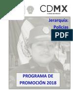 Guia Para Policias 2018