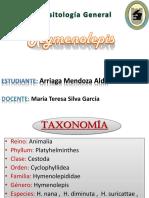 Hymenolepis