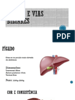 Fígado e Vias Biliares