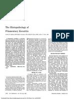 The Histopathology of Filamentary Keratitis