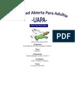 tarea 4 de soiologia de la enfermedades mentales.docx