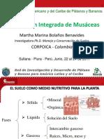 6 M Bolanos Fertilización Integrada en Musaceas