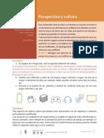 4.6_E_Perspectiva_y_cultura_M2_RU_R2.pdf