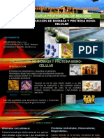 Expo de Proteinas Unicelulares (1)
