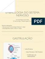Aula Embriologia SN.pdf