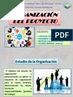 Organizacion Del Proyecto -JALIL