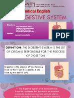 Digestive System Group 1