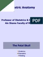 Obstetric-Anatomy.ppt