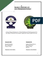 Farnaz Report