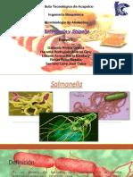 324338997-Salmonella-y-Shigella.pptx