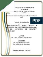 tnl01t591.pdf
