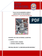 Informe N°11 CALOR DE SOLUBILIDAD