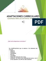 Adaptación Curricular Sugerida (1)