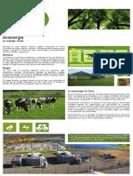 4echile-bioenergia.pdf