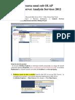 Ghid_ProiectAnalysisServices.docx