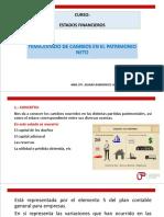 Tema Estado de Cambios en El Patrimonio Neto