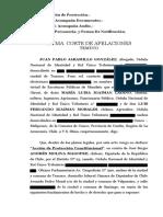 Recurso de Proteccion de María Luisa Igaiman contra el diputado Andrés Molina