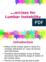PHTH 302 Exercises for Lumbar Instability Presentation